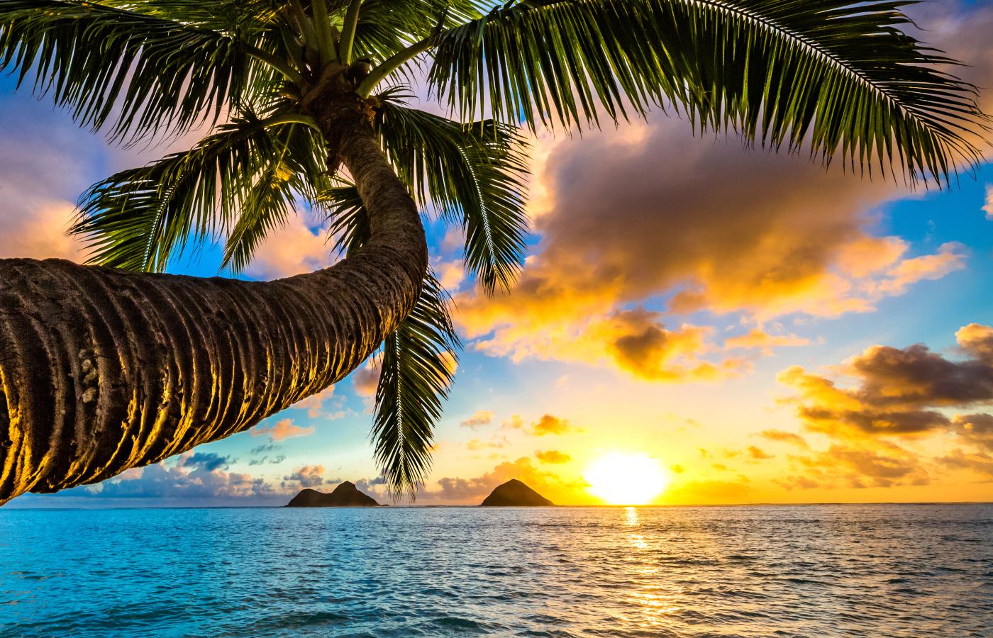 Hawaii mit dem Cabrio